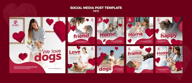 사진이있는 애완 동물 소셜 미디어 게시물