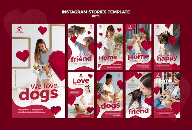 Pets social media stories with photo