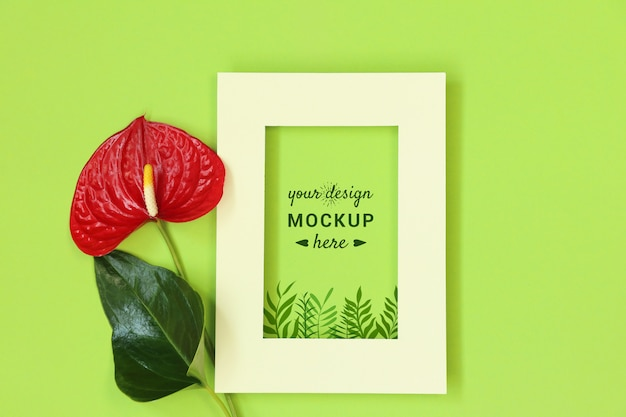 Photo frame with red flower on green background
