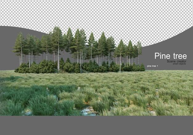 畑の真ん中にある松林