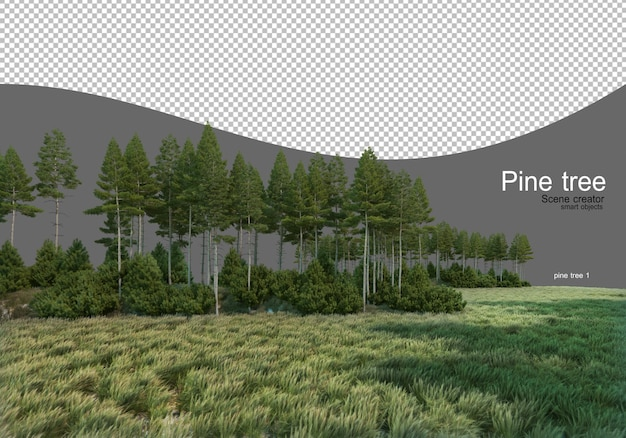 Pine forest in the middle of the field Premium Psd