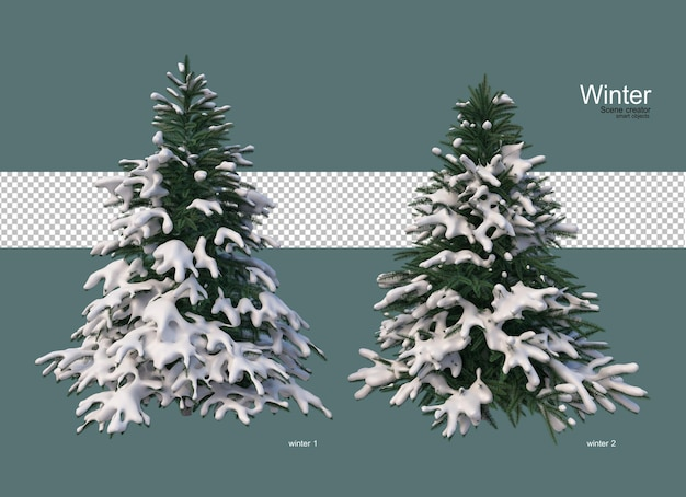 Pine trees of various sizes in winter
