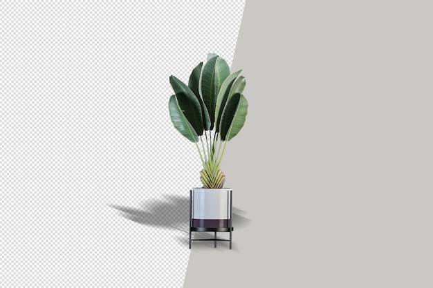 Plant in 3d rendering isolated