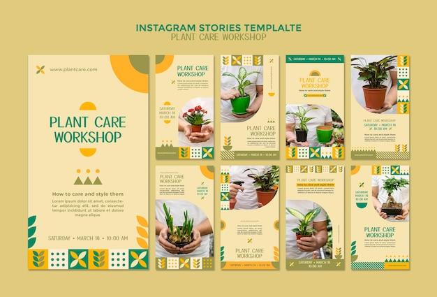 Plant care workshop instagram stories