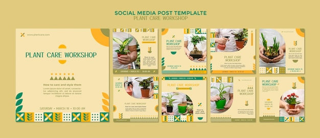 Сообщение в социальных сетях семинара по уходу за растениями