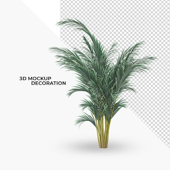 Plant decoration and interior design