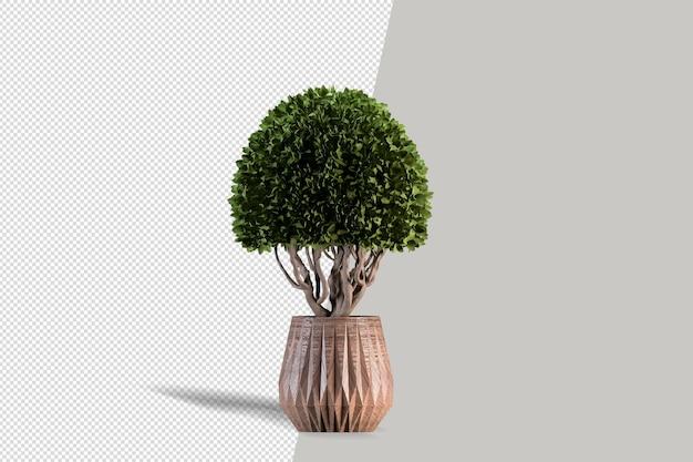 分離された 3 d レンダリングで植物