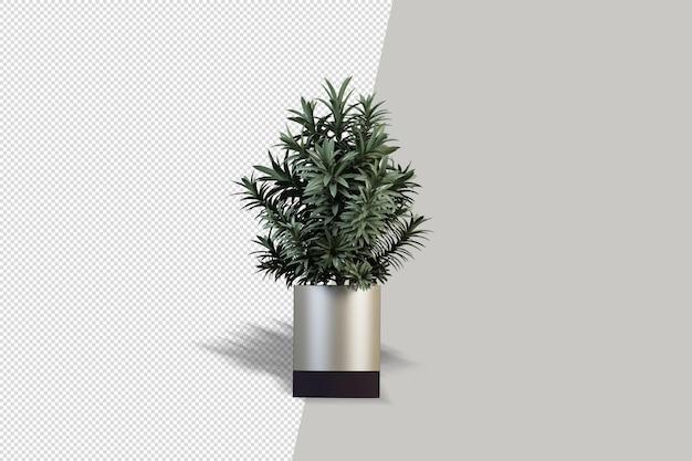 分離された3dレンダリングの植物