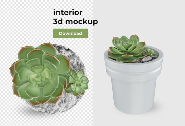 Растение в горшке, украшение и дизайн интерьера изолированы