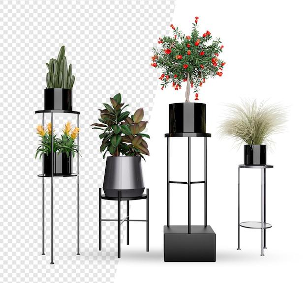 화분 장식 및 인테리어 디자인의 식물