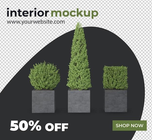 Растение оформление интерьера 3d рендеринга макет