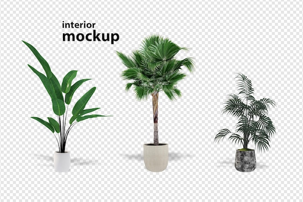 Plant mockup 3d rendering isolated rendered