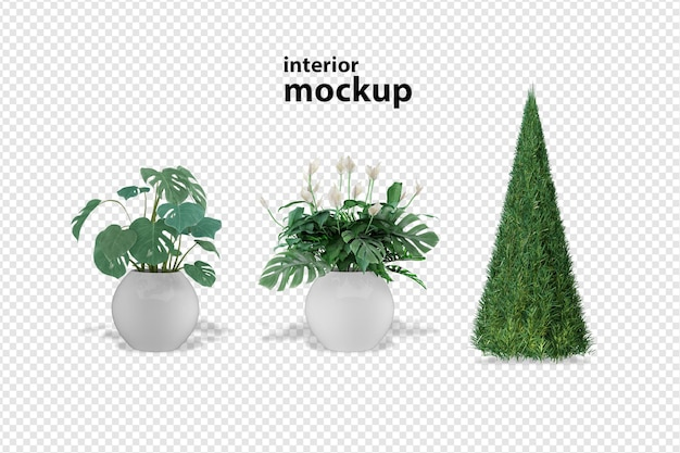 Plant mockup 3d rendering