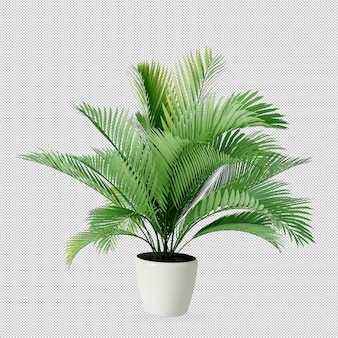 Plant in pot in 3d rendering