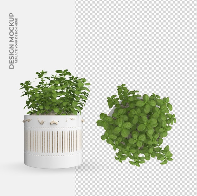 Plant in pot decoration and interior design scene creator