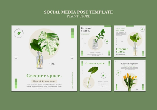 Modello di post sui social media del negozio di piante