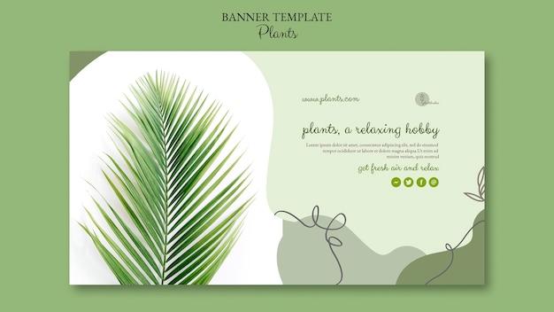 Растения баннер шаблон дизайна