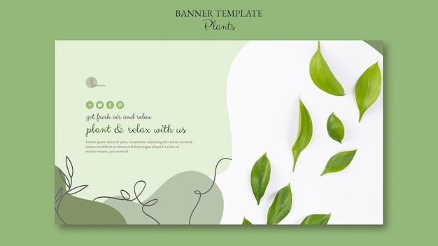 Plants banner template theme