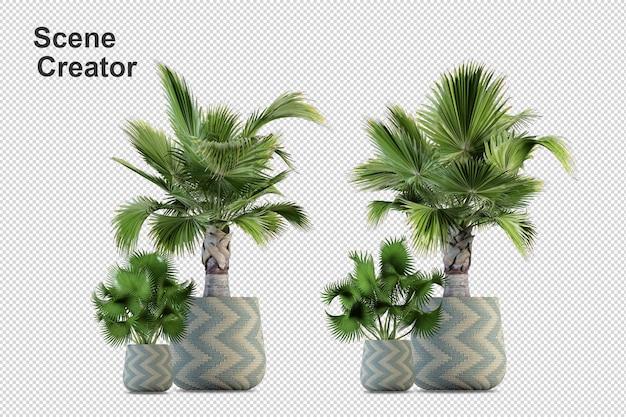 다양한 각도에서 식물 디자인 장면 제작자