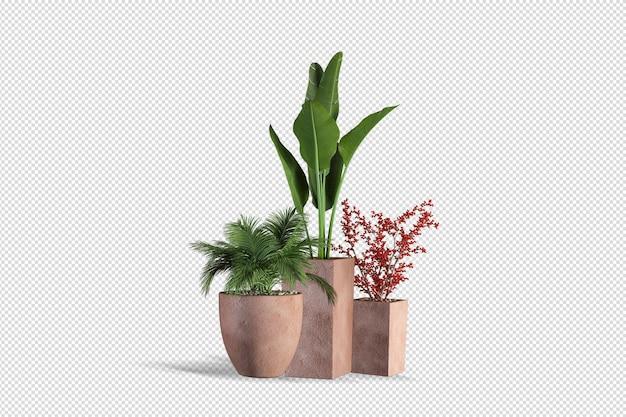 Дизайн растений в разных ракурсах создатель сцены