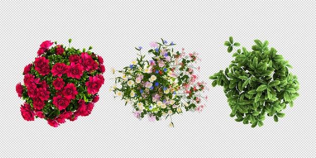 3d 렌더링 냄비에 식물 꽃