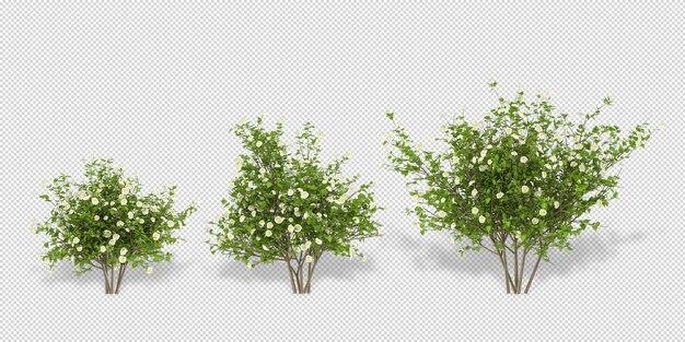 고립 된 3d 렌더링에서 식물 flowersmockup