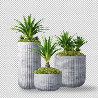 3dレンダリングの植物
