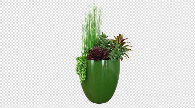 Растения в зеленом керамическом горшке
