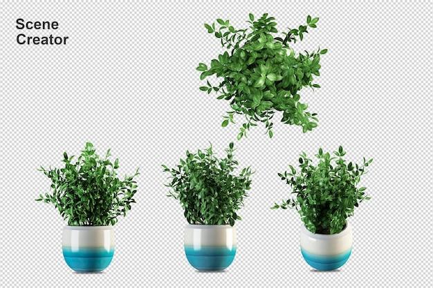 Растения в горшках в 3d визуализации
