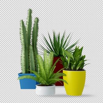 Растения в горшках в 3d-рендеринге