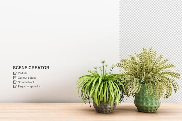 分離された木の床のデザインの植物