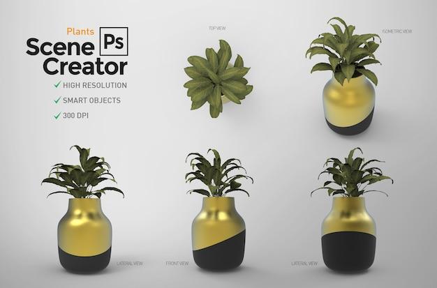 Растения. создатель сцены. ресурс. Premium Psd
