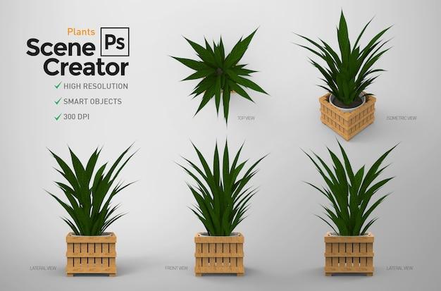 植物。シーンクリエーター。資源。