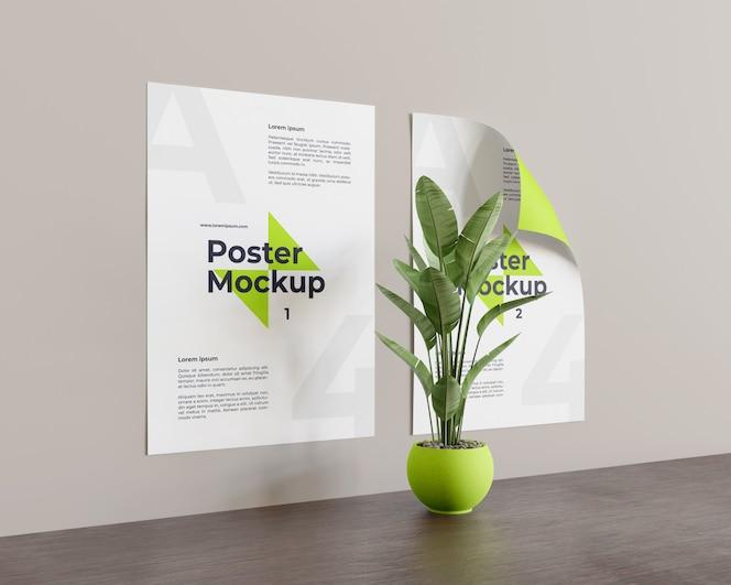 왼쪽보기에서 중간 모습의 식물 포스터 모형