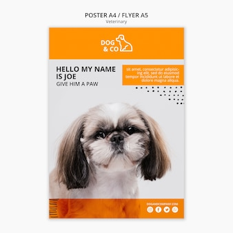 Poster with veterinary template concept