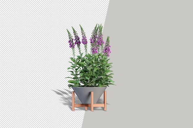 Potted plants flowers in 3d rendering isolated