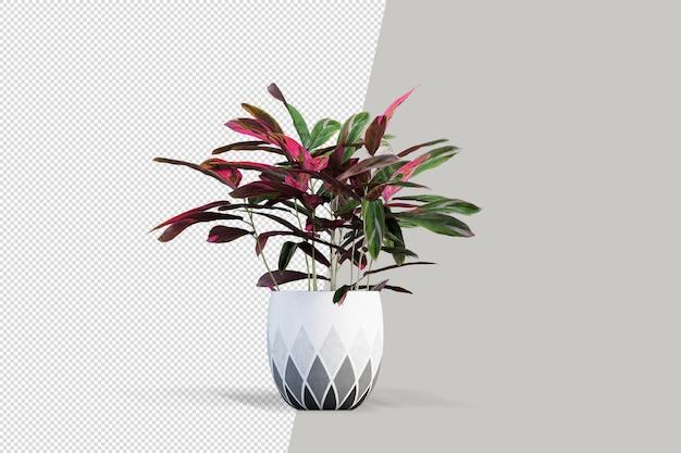 分離された 3 d レンダリングで鉢植えの花