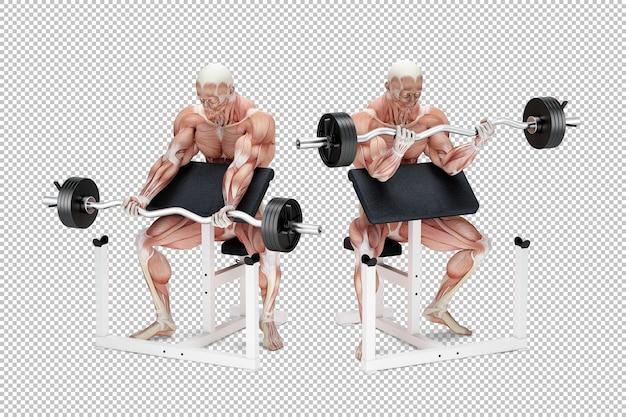Проповедник сгибание бицепса упражнение анатомическая иллюстрация