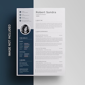 Professional business resume with sidebar