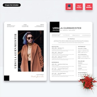 Professional resume template-02