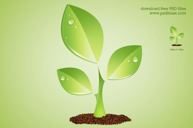 Зеленый символ окружающей среды завода psd
