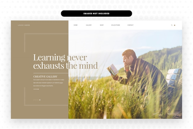 Reading and learning website landing page, hero banner & website template
