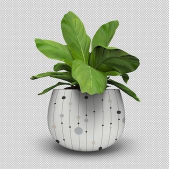 孤立した植物のリアルな3dレンダリング