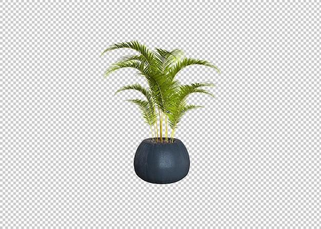 Реалистичная 3d визуализация изолированного растения в горшке