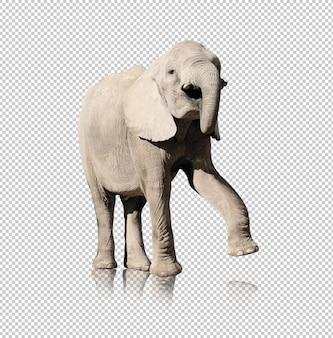 Реалистичный слон