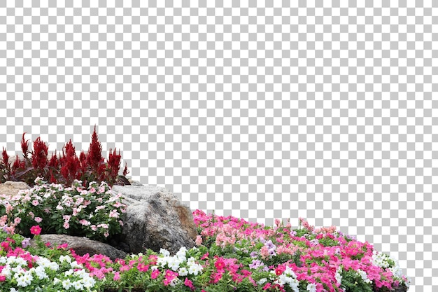 Realistic flowering plants foreground isolated