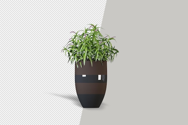 Realistic plant in 3d rendering