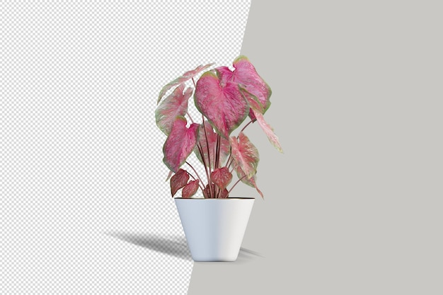 3 d レンダリングのリアルな植物