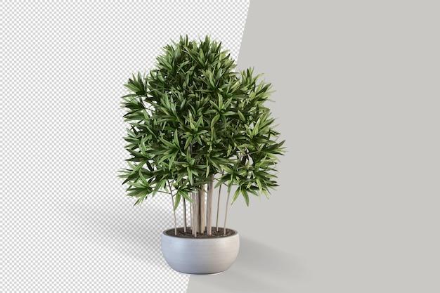 ポット分離3dレンダリングの現実的な植物 Premium Psd