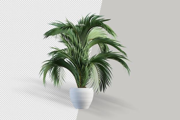 Реалистичное растение в горшке изолированное 3d-рендеринг